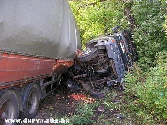 Kamion a fák között