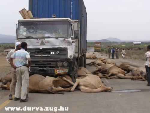 Tevéket gázolt a kamion