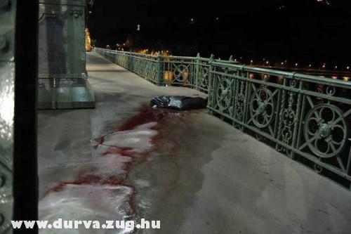 Leugrott és meghalt az a férfi, aki a Szabadsághíd tetejérõl vetette le magát - durva fotó