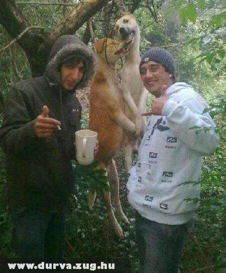 Állatkínzók pózolnak - forrás: facebook