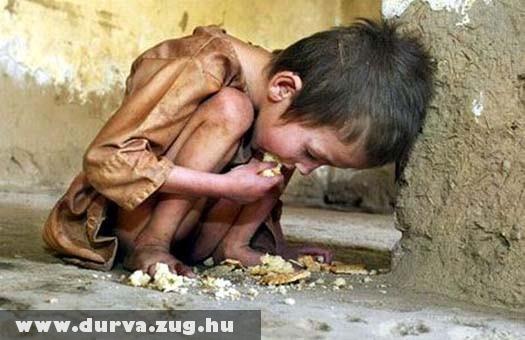Szegénység, éhezés, kiszolgáltatottság